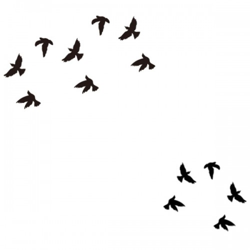 tatoo temporaire oiseaux mod les et exemples. Black Bedroom Furniture Sets. Home Design Ideas