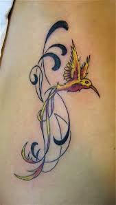 Signification Fleur Oiseau Du Paradis Idee D Image De Fleur