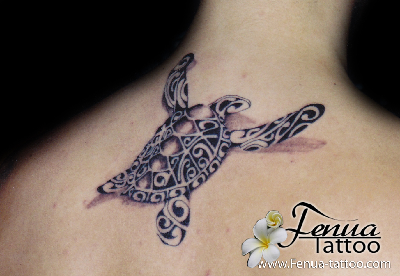 Tatouage fleur de tiar signification fashion designs - Signification tortue tatouage ...