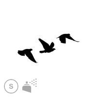 Tatouage petit oiseau noir mod les et exemples - Modele d oiseaux a dessiner ...